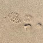 Zeven manieren om over de vakantie te schrijven